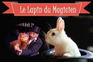 Le Lapin du magicien dans le chapeau